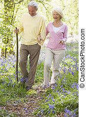 marche couples, dehors, à, marchant bâton, sourire
