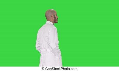 marche, docteur, chroma, écran, vert, key., robe