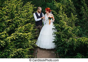marche espace, junipers, récemment, par, couple, marier, parc, entre