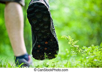 marche, exercice