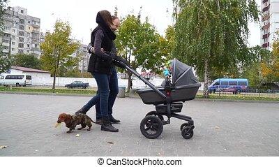 marche, famille, parc, poussette bébé, heureux