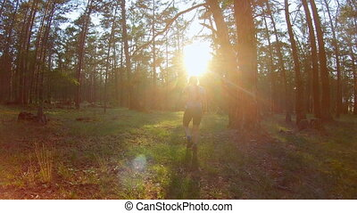 marche, femme, coucher soleil, jeune, forêt