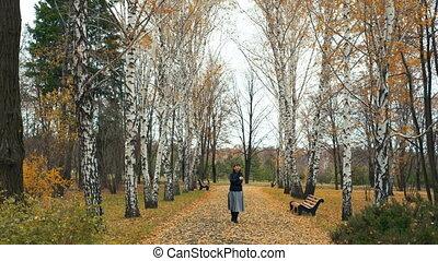 marche femme, dans, automne, parc