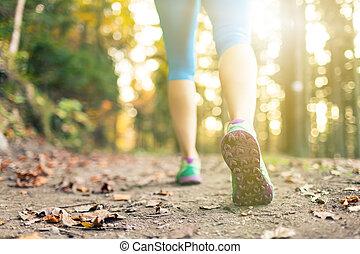 marche femme, et, randonnée, dans, automne, bois