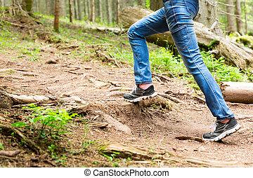 marche, femme, forêt