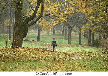 marche, femme, parc, automne