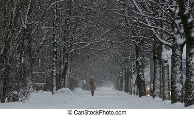 marche, femme, parc, hiver