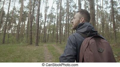 marche, forêt