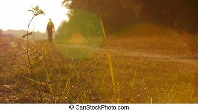 marche, gens, bottom., unfocused, parc, sentier, long, chemin, vue
