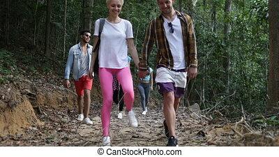marche, groupe, conversation, randonnée, gens, parcours, trekking, vacances, forêt, équipe, pendant, touristes