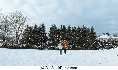 marche, hiver, neigeux, couple, champ, long, heureux