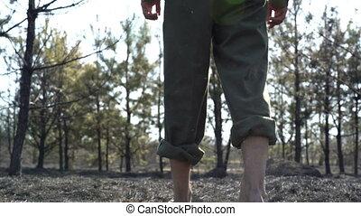 marche homme, après, nature, concept, chagrin, voler plus, grand, brûler, pieds, sauvage, écologique, dramatique, terrestre, destruction, désastre, brûlé, cendre, scène