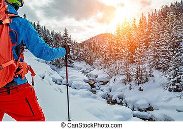 marche, jeune, snow., raquettes, poudre, homme