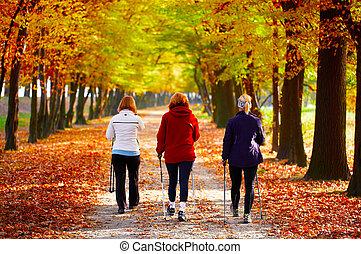 marche, parc, -, trois, nordique, femmes