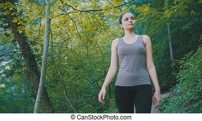 marche, randonnée femme, rochers, piste, forêt, voyageur, sentier, mountain.