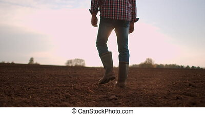 marche, sec, bas, par, pieds, lent, jeune, field., jambes, pré, angle, motion., tournesol, mâle, vert, suivre, marcher, petit, pousses, agriculteurs, homme, sol, vue, bottes
