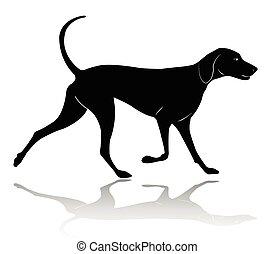 marche, silhouette, chasse, -, chien, vecteur