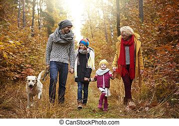 marche, travers, famille, forêt