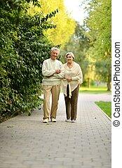 marche, vieux, couple, parc, automne, portrait