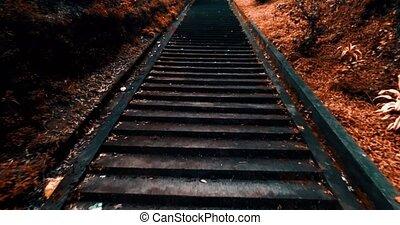 marche, vieux, haut, escalier