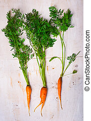 marchew, organiczny, świeży