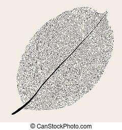 marchito, leaf.