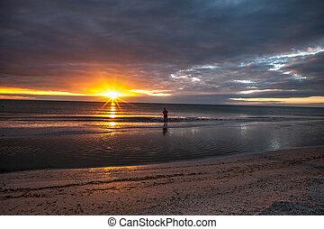 marco, 島, 日没, 魚, 前方へ, 浜, tigertail, 人