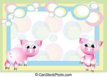 marco, cerdos