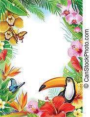 marco, con, flores tropicales, mariposas, y, tucán