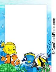 marco, con, peces tropicales, 1