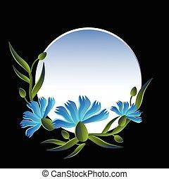 marco de la foto, con, cornflower
