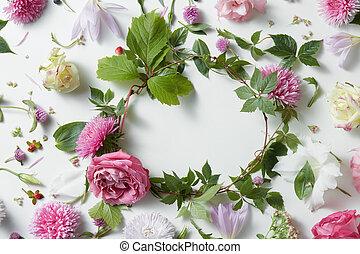 marco, de, rosa florece