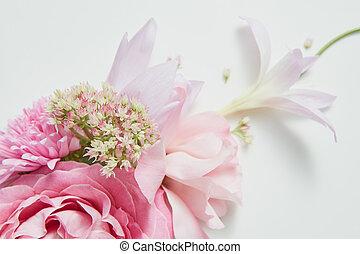 marco, en, el, esquina, de, un, flor rosa