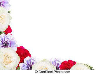 marco, flor, aislado, plano de fondo, blanco
