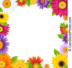 marco, flor, colorido, gerbers