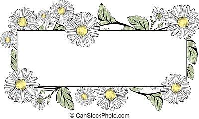 marco, flor, copyspace, margarita
