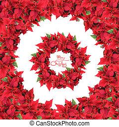 marco, guirnalda, aislado, redondo, flores blancas, navidad