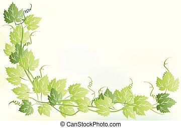 marco, hojas, de, uvas