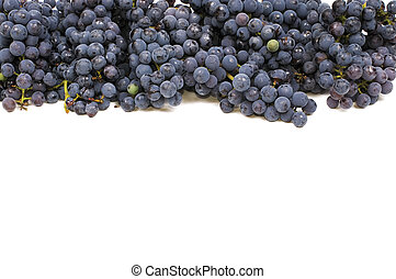 marco, uva
