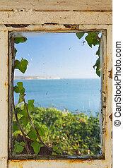 marco, ventana, por, mar, cubierto, hiedra, vista