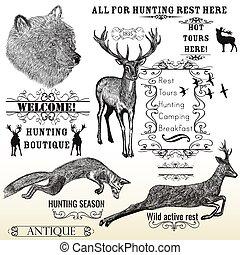 marcos, calligraphic, animales, zorro, activo, oso, diseño, conjunto, grabado, vector, resto, venado, caza, mano, dibujado, todos