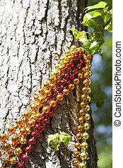 Mardi Gras Beads Hanging from Tree