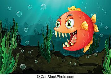 mare, alghe, piranha, sotto