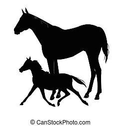 mare and colt in black silhouette - black silhouette over...
