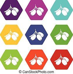 mare, buckthorn, ramo, icona, set, colorare, hexahedron