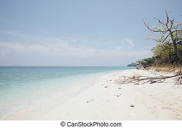 mare, e, spiaggia, in, cielo blu, fondo