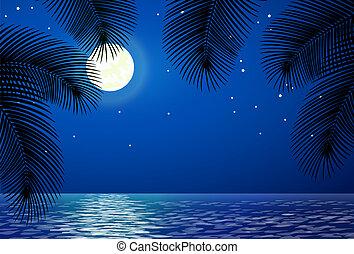 mare, paesaggio, con, luna, e, palma, alberi.