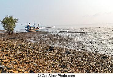 marea, amarrado, bajo, barco, pesca