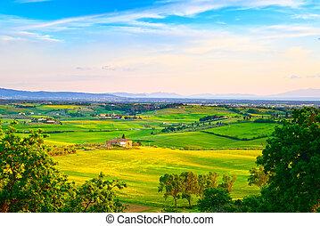 Maremma, rural sunset landscape. Countryside farm and green fields. Elba island on horizon. Tuscany, Italy, Europe.