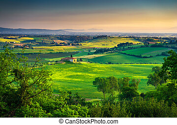 Maremma, rural sunset landscape. Countryside old farm and green field. Tuscany, Italy.